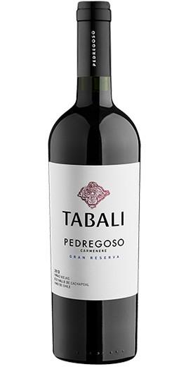 Tabali Pedregoso Carmenere Grand Reserva
